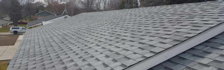 A roof made by a TZ roof contractor